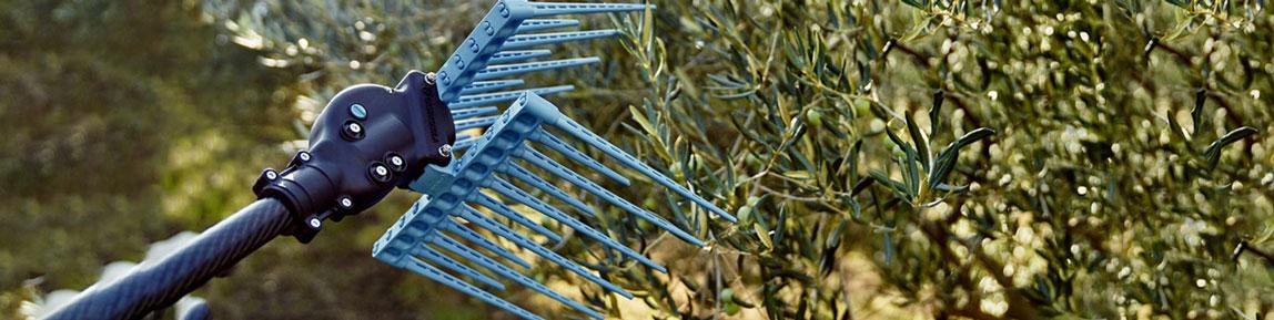 Abbacchiatori & Scuotitori per Olive